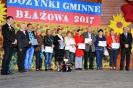 Najpiękniejszy Ogród 2017 - konkurs.